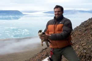 Birds and 'bergs: 29 Years of Avian Research in Greenland @ Rockford City Market